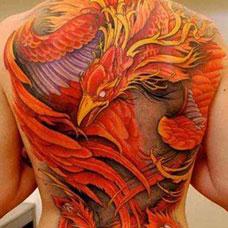 满背火红色的朱雀纹身图片