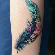 手臂彩色精美的羽毛纹身图片