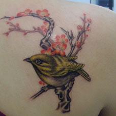 女生肩部个性小鸟纹身图案