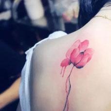 女生背部简约罂粟花刺青唯美图案